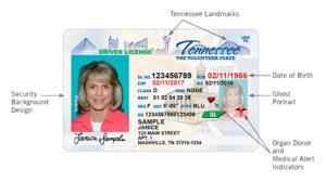 Current example of a Tennessee driver's license. License example from TN.GOV/STATE OF TENNESSEE